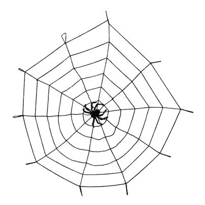 Spiderweb Elastic with Spider